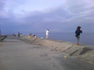 富具崎漁港でアジ釣り